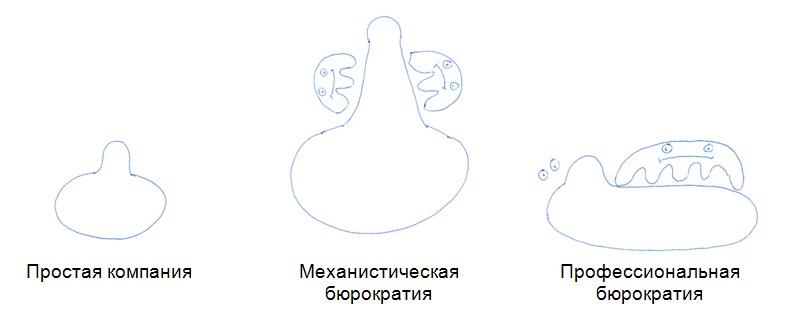 Три вида организации