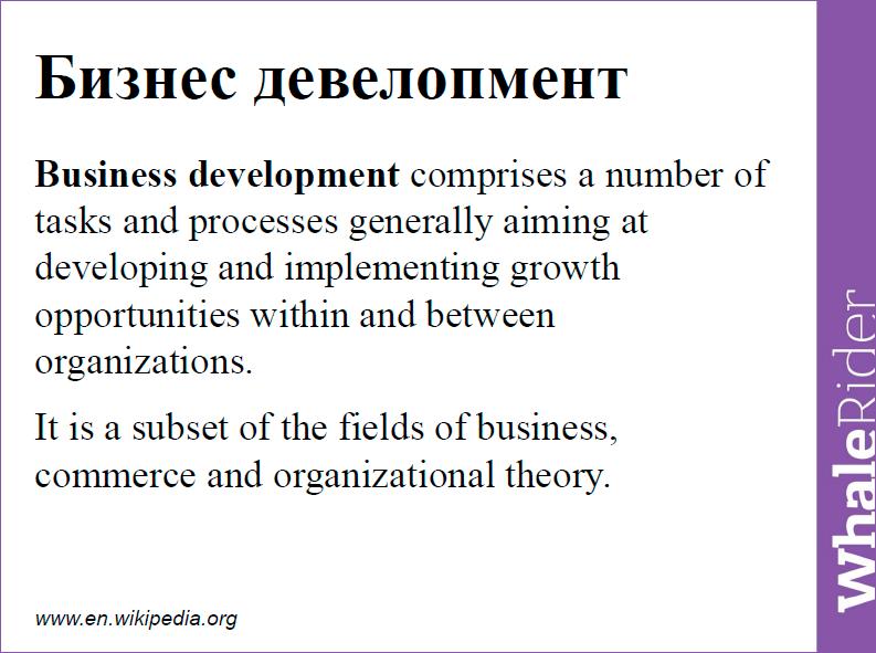 Бизнес-девелопмент для SaaS-сервисов: дизайн-проектирование стратегии - 2