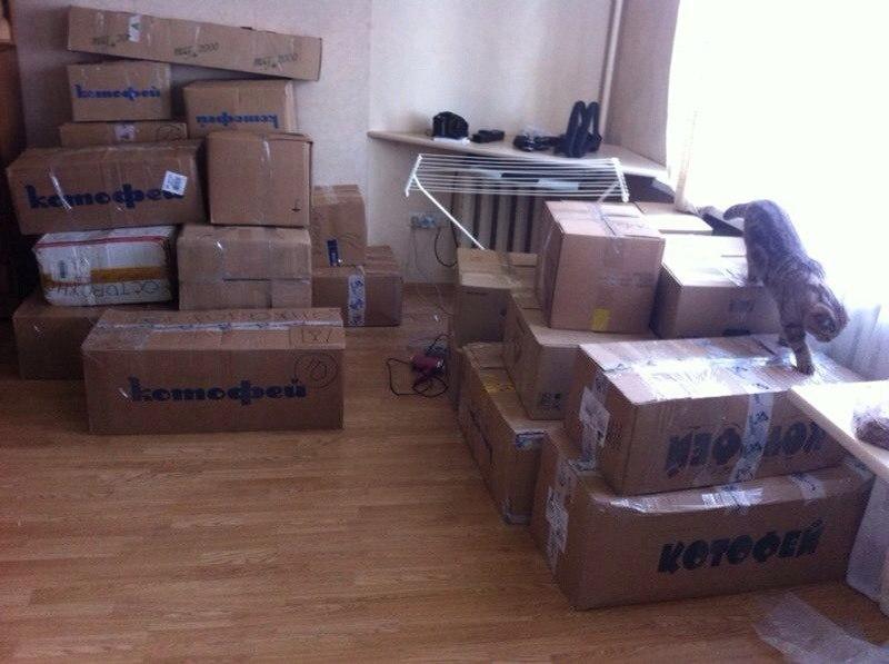 Истории малого бизнеса в Краснодаре: безумная команда фрилансеров и много отваги - 2