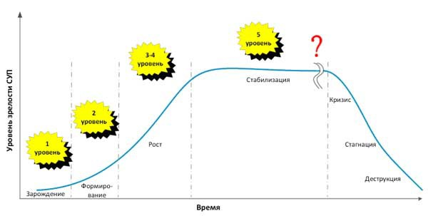 Развитие системы управления проектами в организации среднего бизнеса